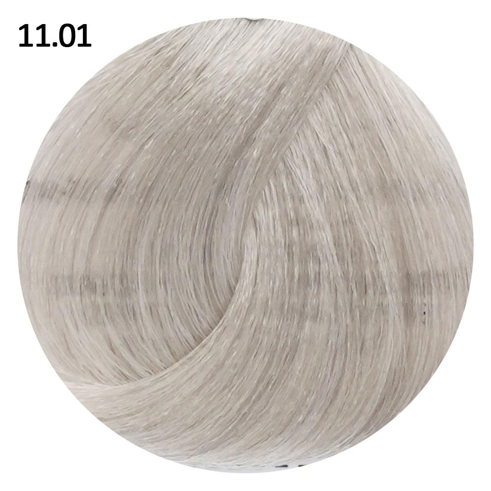 11.01 светло-пепельный блондин EVE Experience 100 ml
